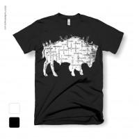 Buffalo NY on a Buffalo